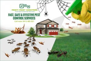 How to Select the Best Pest Exterminator