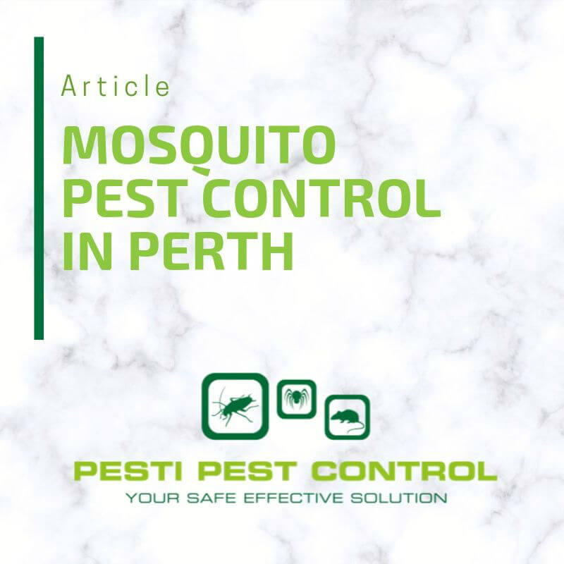 Mosquitoes are among the most harmful pests there are as they pose health risks to both humans and animals. Because of this, humans have always sought to exterminate them. Wherever you are in Perth or beyond, the most effective way of getting rid of them is by using mosquito pest control experts in your Perth neighbourhood.